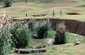 golf de Sudáfrica